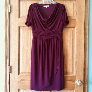 Evan Picone Rich Maroon Stretchy Dress 12